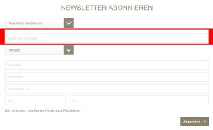 Immer aktuell mit dem stilbegeistert.de Newsletter